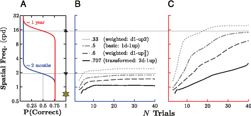 Figure 5. Estimated threshold as a function of number of trials, using four different threshold targets and either a low or a high underlying threshold. (A) The underlying psychometric functions for simulated young and old infants. Markers on the right show the starting point of all adaptive staircases (gold star) and the true 50% correct threshold for the younger (down arrow) and older (up arrow) infant. For clarity, the true values for the other three target thresholds are not marked but can be inferred by reading upward from the x-axis and then across. (B) Results of 20,000 Monte Carlo simulations (per staircase algorithm) for the simulated young