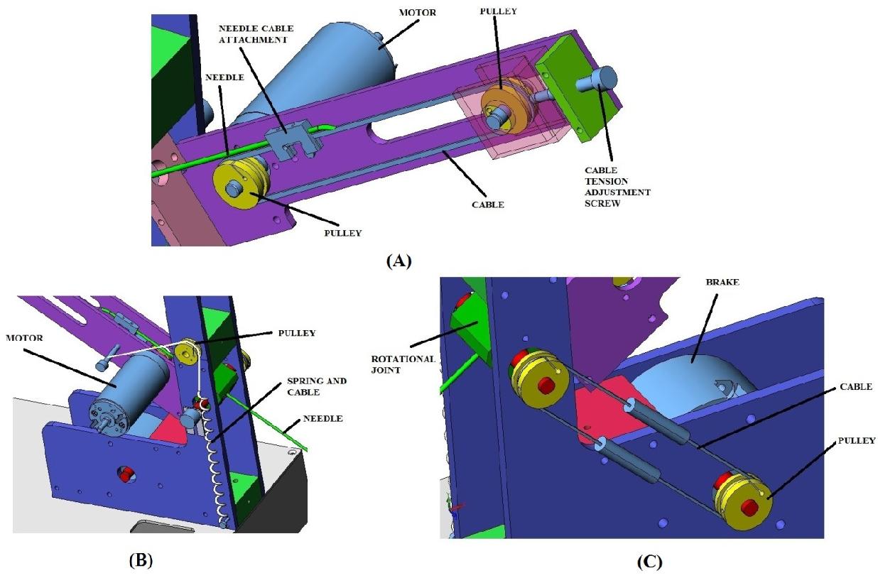 Structure of supraspinous ligament - Semantic Scholar