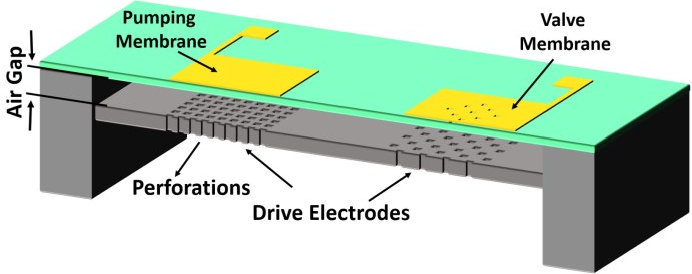 1 Cross Sectional View Of A Micropump Chip Pumping Membrane P