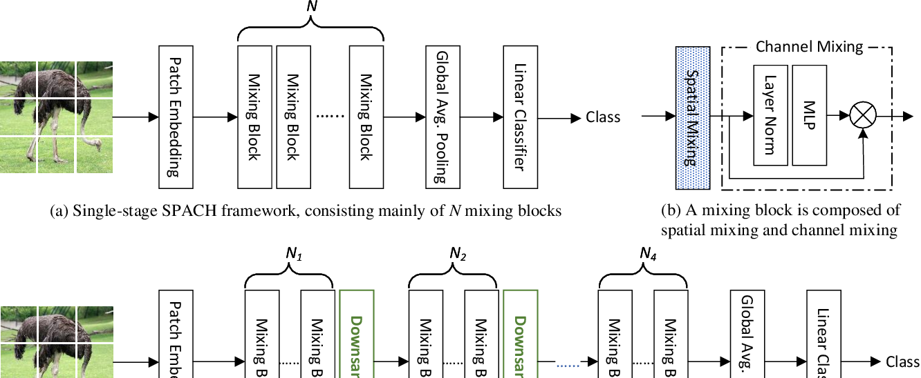 Figure 1 for A Battle of Network Structures: An Empirical Study of CNN, Transformer, and MLP