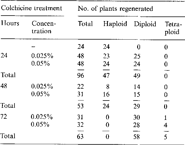 Table 1. Ploidy of plants regenerated from colchicine-treated haploid calli as determined from root tip squashes