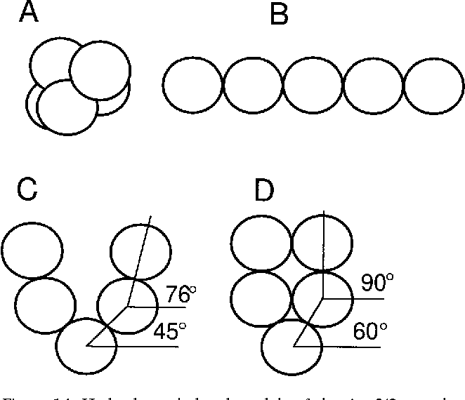 Figure 14 From Structure Subunit Topology And Actin Binding