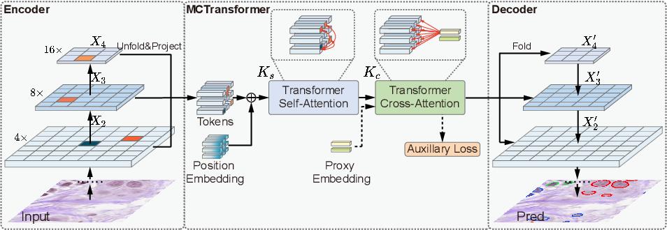 Figure 3 for Multi-Compound Transformer for Accurate Biomedical Image Segmentation