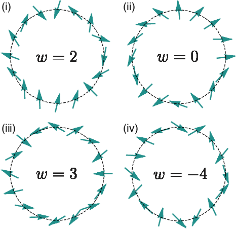 Figure 2 for Machine Learning Topological Invariants with Neural Networks