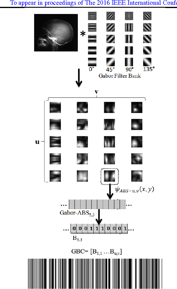 Figure 3 for Gabor Barcodes for Medical Image Retrieval