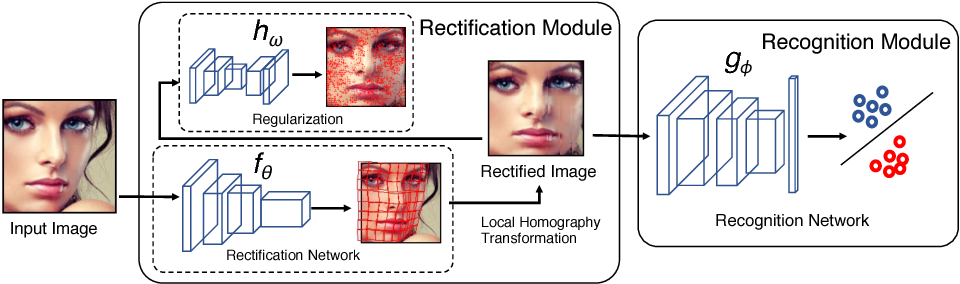 Figure 3 for GridFace: Face Rectification via Learning Local Homography Transformations