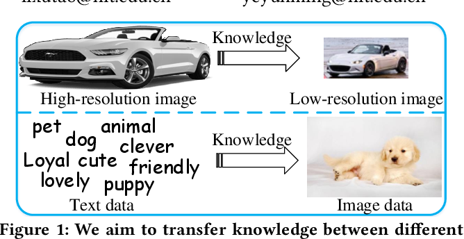 Figure 1 for Heterogeneous Domain Adaptation via Soft Transfer Network