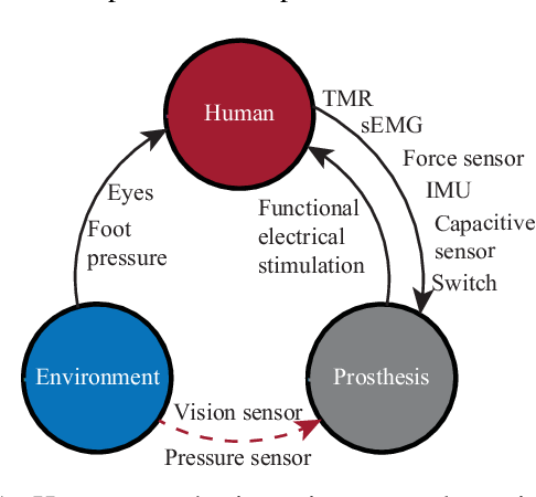 Figure 1 for Sensor Fusion for Predictive Control of Human-Prosthesis-Environment Dynamics in Assistive Walking: A Survey