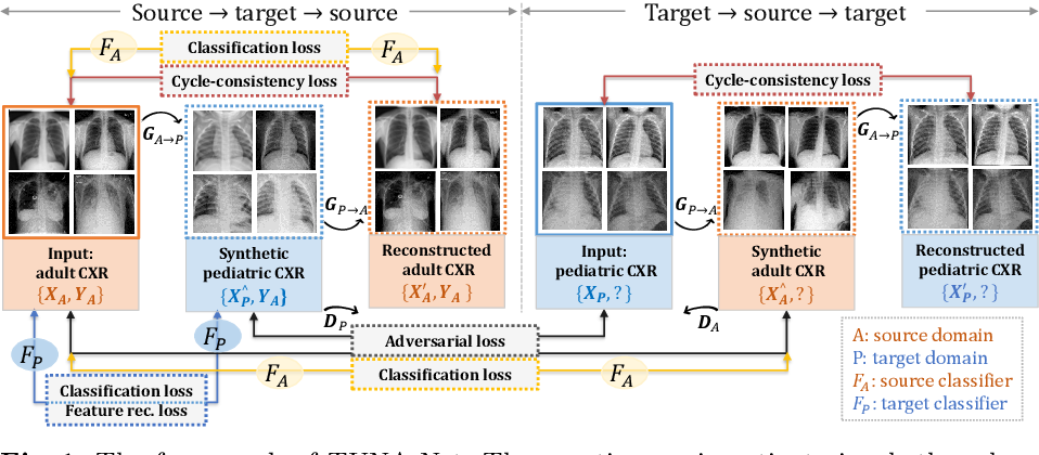 Figure 1 for TUNA-Net: Task-oriented UNsupervised Adversarial Network for Disease Recognition in Cross-Domain Chest X-rays
