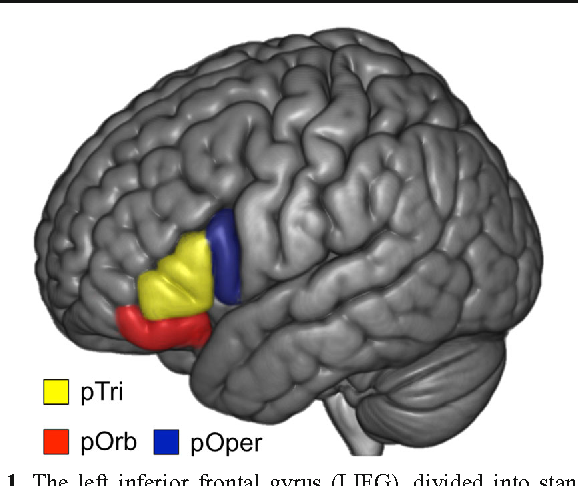 Figure 1 From A Neuronal Retuning Hypothesis Of Sentence Specificity
