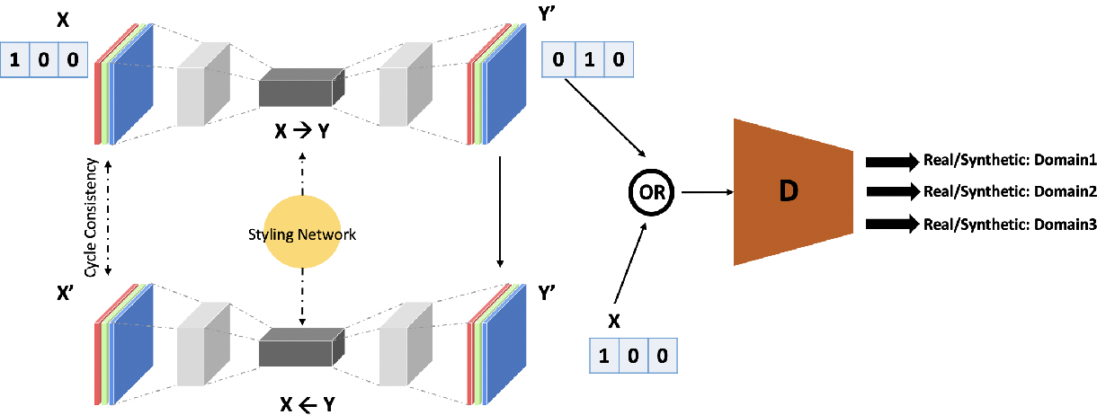 Figure 3 for CIT-GAN: Cyclic Image Translation Generative Adversarial Network With Application in Iris Presentation Attack Detection