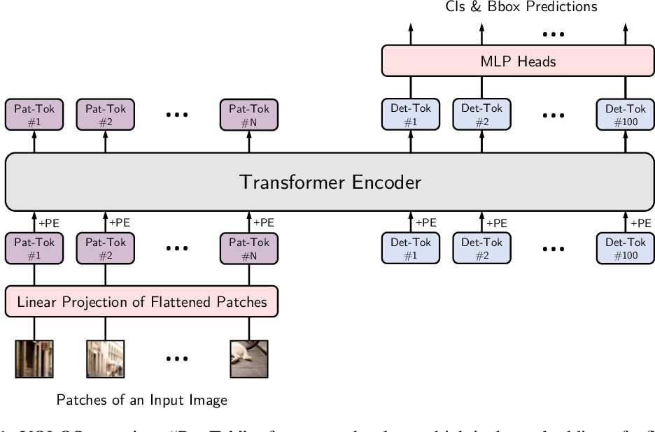 Figure 1 for You Only Look at One Sequence: Rethinking Transformer in Vision through Object Detection