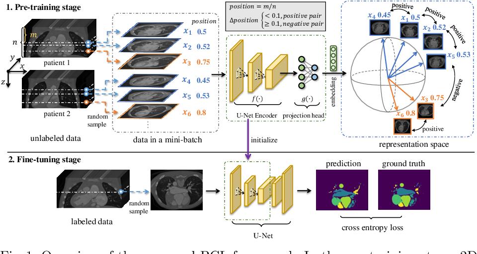 Figure 1 for Positional Contrastive Learning for Volumetric Medical Image Segmentation