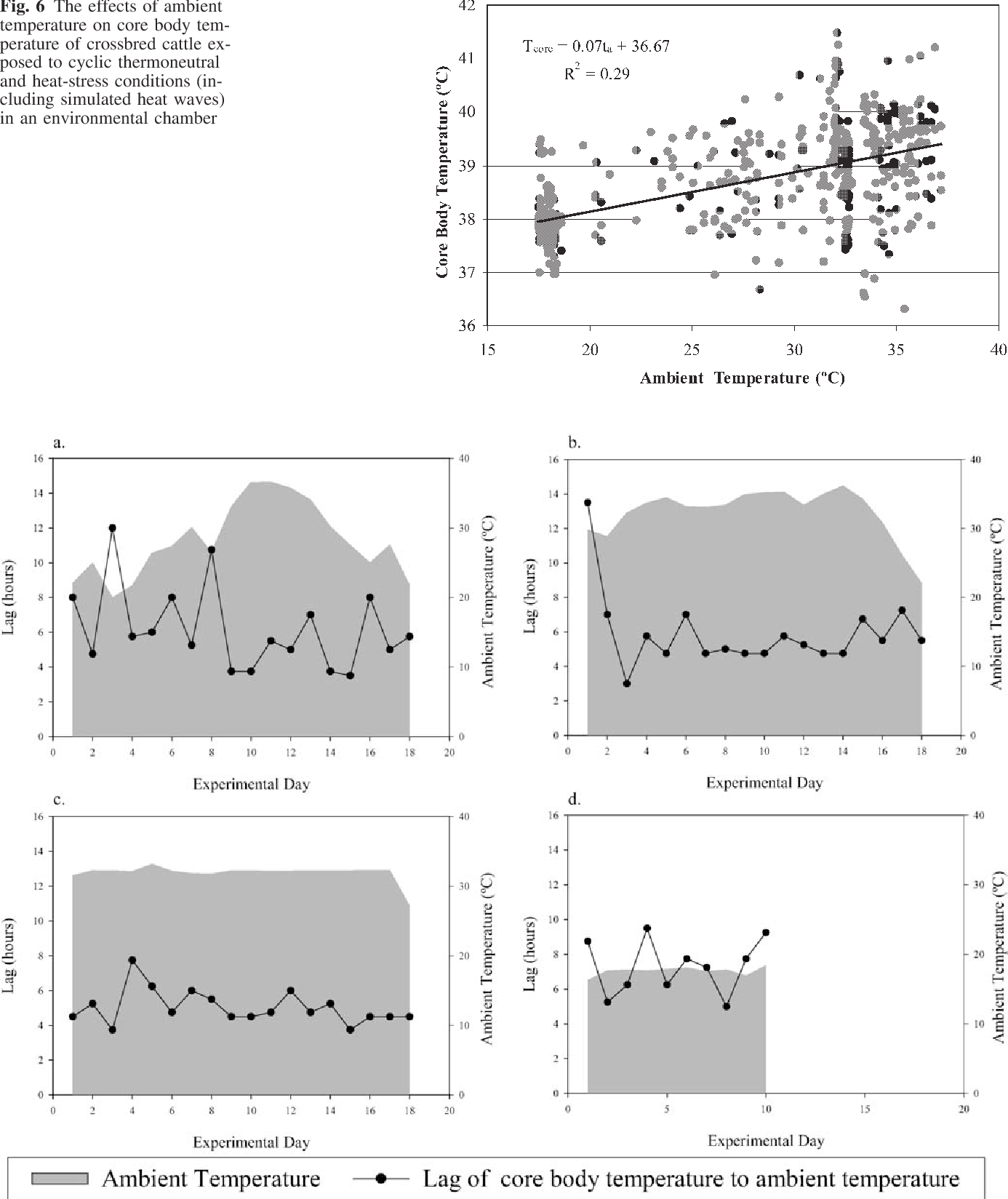 Fig. 6 The effects of ambient temperature on core body temperature of crossbred cattle exposed to cyclic thermoneutral and heat-stress conditions (including simulated heat waves) in an environmental chamber