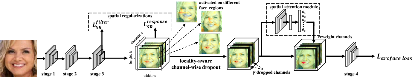 Figure 1 for Locality-aware Channel-wise Dropout for Occluded Face Recognition