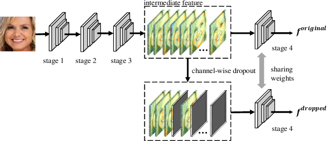 Figure 3 for Locality-aware Channel-wise Dropout for Occluded Face Recognition