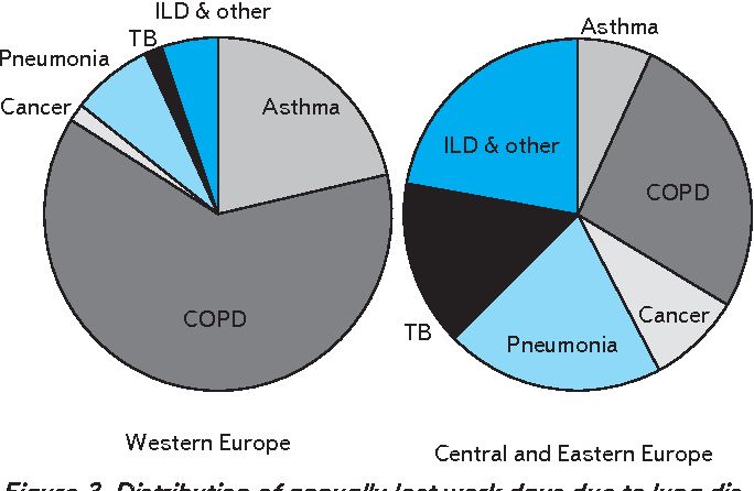 Figure 3 From Distribution Of Costs In Europe For Major Lung