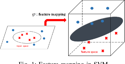 Figure 1 for Fast Polynomial Kernel Classification for Massive Data