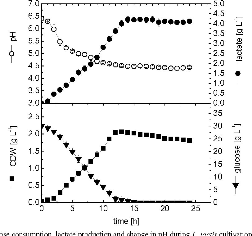 Fig. 1. Cell growth, glucose consumption, lactate production and change in pH during L. lactis cultivation in shake flask culture.