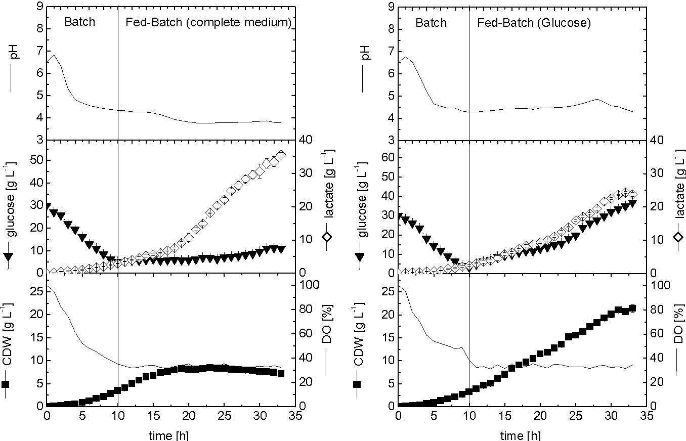 Fig. 5 Kinetics of cell growth, glucose consumption, lactate production and change in cultivation parameters during cultivation in fedbatch culture (mono-feeding by glucose)