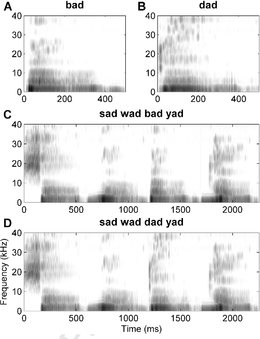 Figure 1 from Temporal plasticity in auditory cortex
