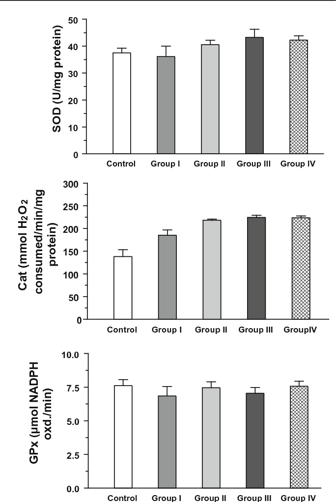 Figure 3 Antioxidant enzymes in control and treated rats liver. Data represents mean ± SEM of three independent experiments.