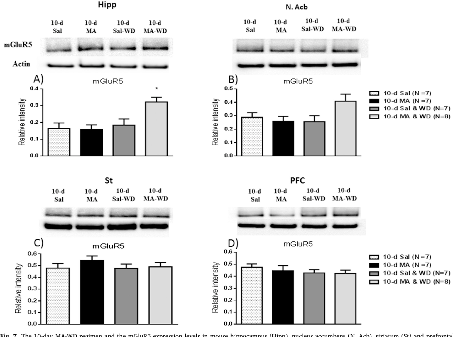 mGluR5 upregulation and the effects of repeated