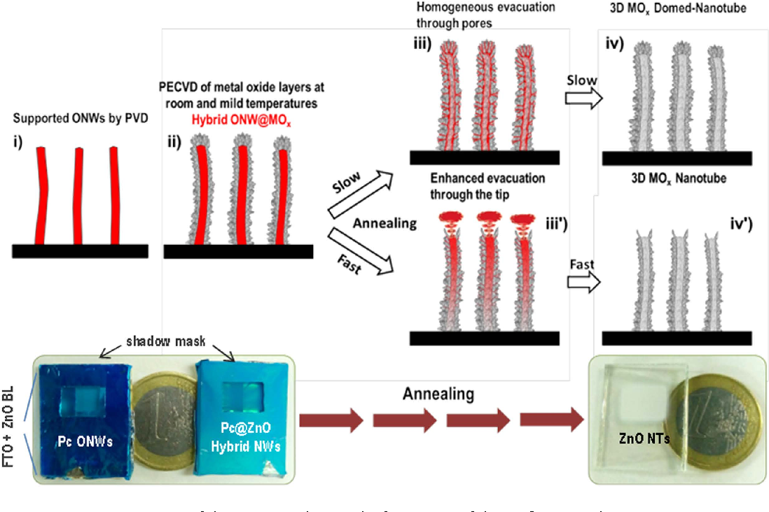 Vacuum template synthesis of multifunctional nanotubes with tailored ...