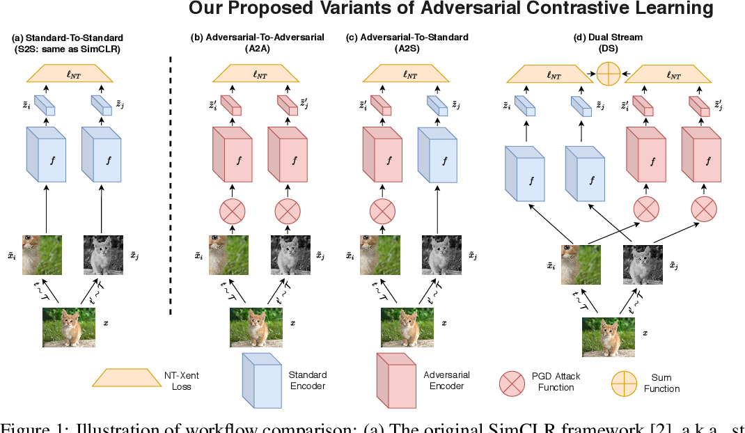 Figure 1 for Robust Pre-Training by Adversarial Contrastive Learning