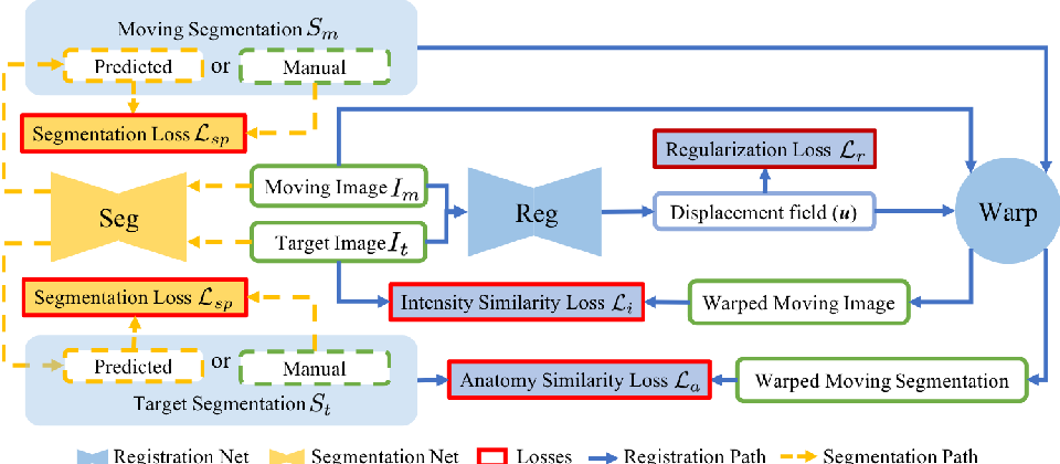 Figure 1 for DeepAtlas: Joint Semi-Supervised Learning of Image Registration and Segmentation