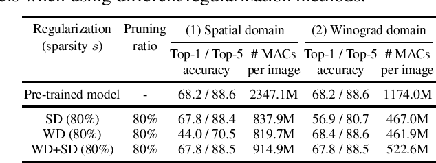 Figure 2 for Jointly Sparse Convolutional Neural Networks in Dual Spatial-Winograd Domains