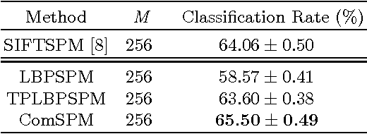 Figure 3 for Combined Descriptors in Spatial Pyramid Domain for Image Classification