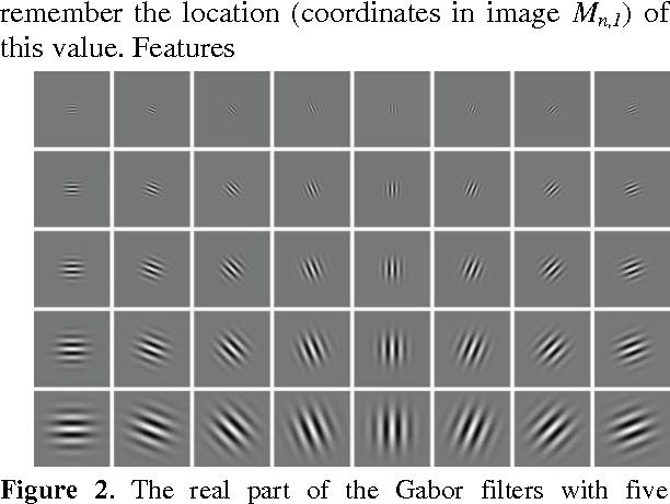 Figure 2. The real part of the Gabor filters with five frequencies and eight orientations