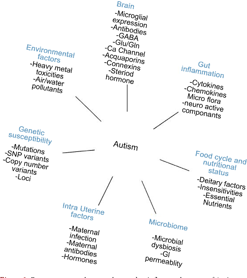 Deciphering the Risk Factors of Autism: Are We There Yet? - Semantic ...