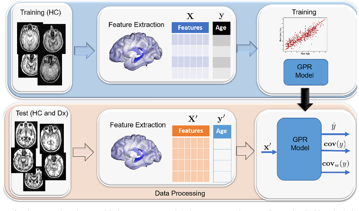 Figure 3 for Gaussian Process Uncertainty in Age Estimation as a Measure of Brain Abnormality