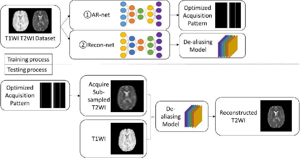 Figure 2 for Deep Simultaneous Optimisation of Sampling and Reconstruction for Multi-contrast MRI