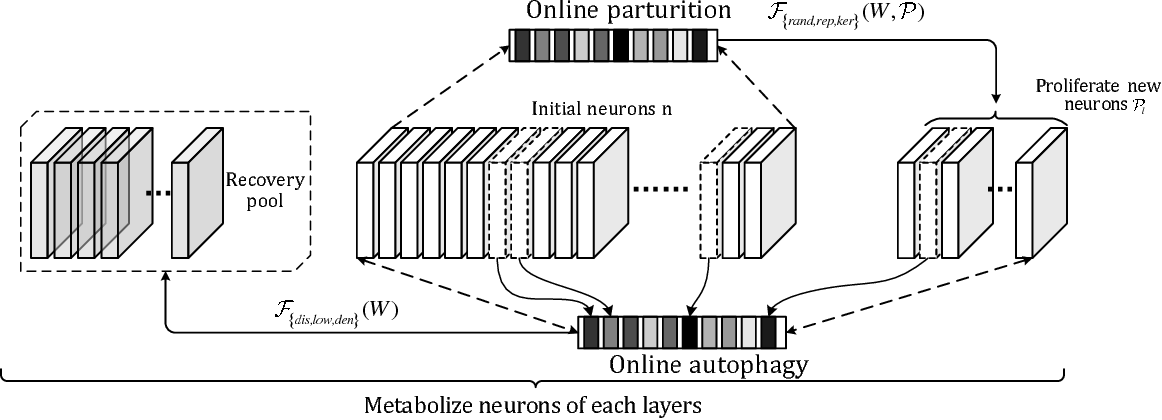 Figure 3 for Metabolize Neural Network