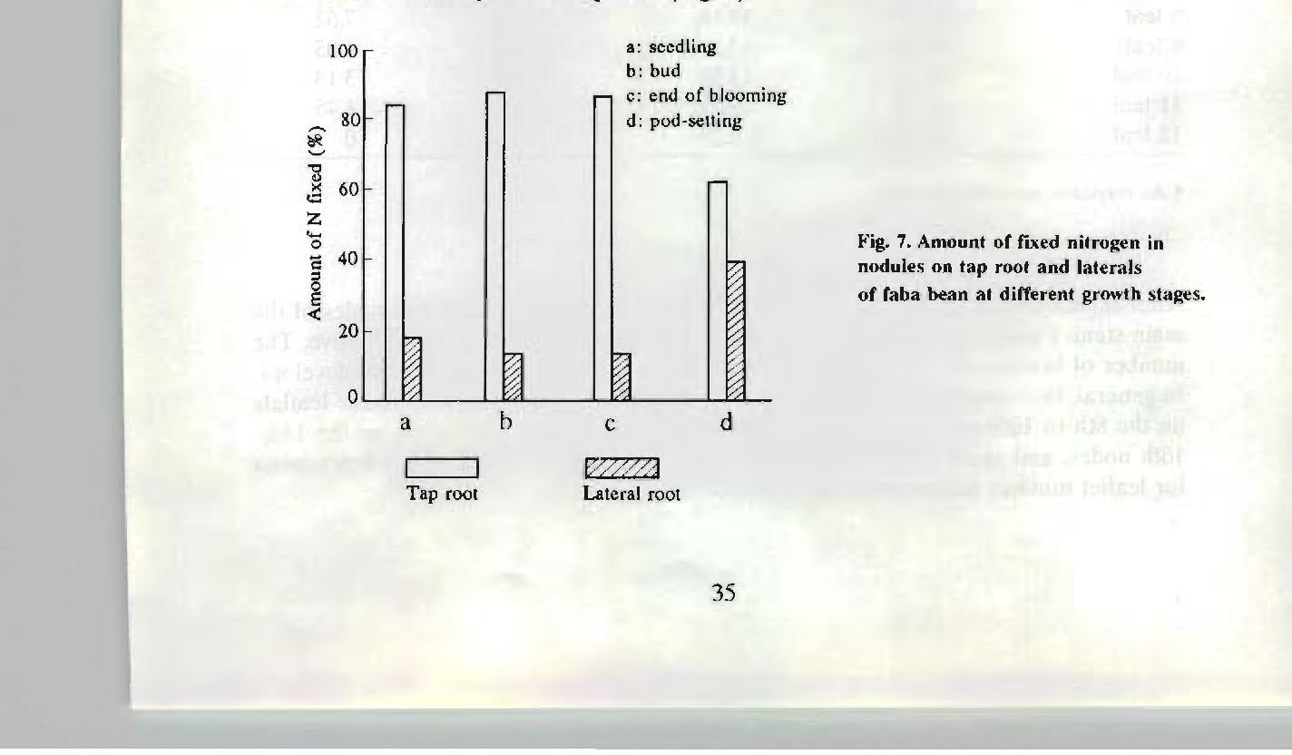 Figure 7 From Faba Bean In China State Of The Art Review