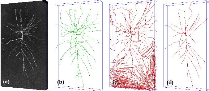 Figure 1 for 3D WaveUNet: 3D Wavelet Integrated Encoder-Decoder Network for Neuron Segmentation