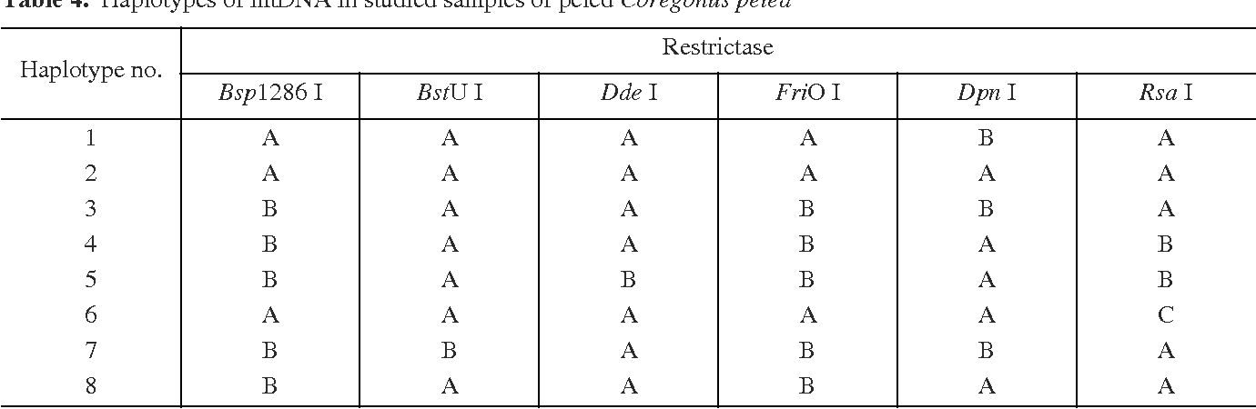 Table 4. Haplotypes of mtDNA in studied samples of peled Coregonus peled