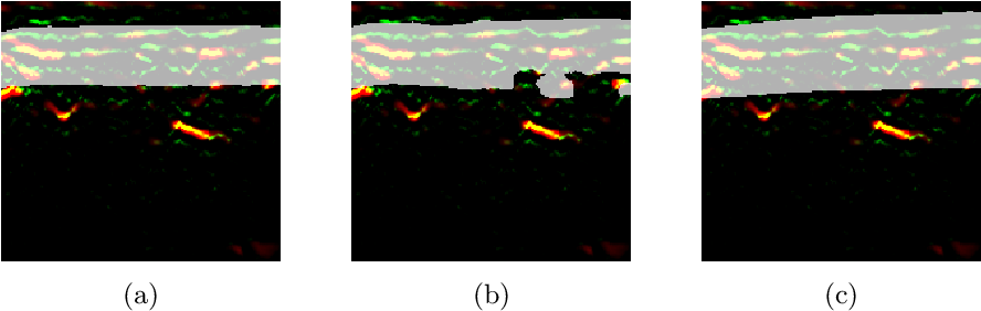 Figure 4 for A distance-based loss for smooth and continuous skin layer segmentation in optoacoustic images