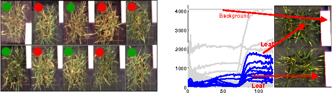 Figure 1 for Latent Dirichlet Allocation Uncovers Spectral Characteristics of Drought Stressed Plants