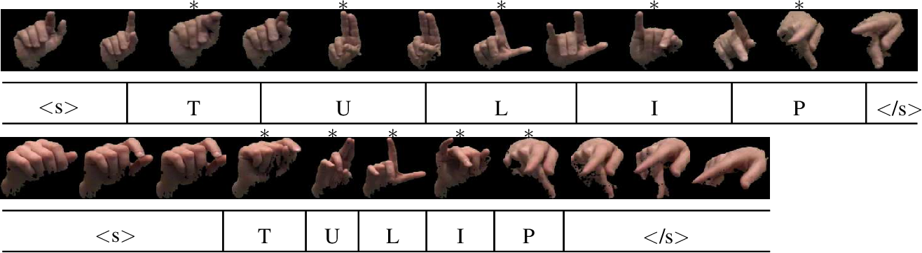Figure 3 for American Sign Language fingerspelling recognition from video: Methods for unrestricted recognition and signer-independence