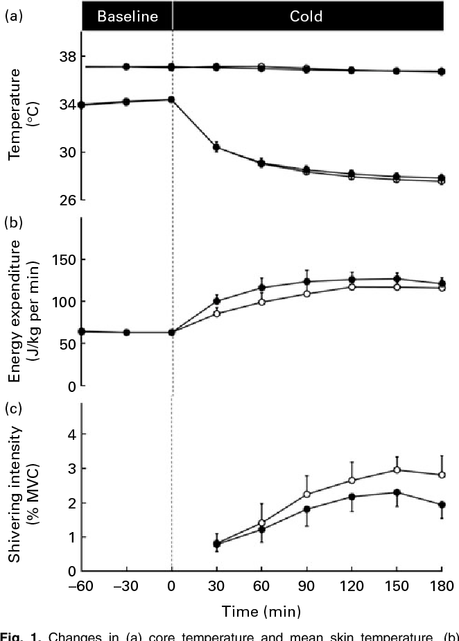 Fig. 1. Changes in (a) core temperature and mean skin temperature, (b) energy expenditure and (c) mean shivering intensity measured in men exposed to mild cold exposure following the ingestion of 1600 mg of epigallocatechin-3-gallate and 600 mg of caffeine (Green tea, ) or a placebo (Placebo, ). MVC, maximal voluntary contraction.