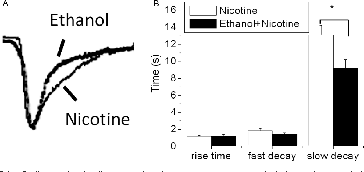 Figure 2. Effect of ethanol on the rise and decay times of nicotine-evoked currents. A: Representitive recordings evoked by the application (15 s) of nicotine (80 μM) in the absence and the presence of 50 mmol/L ethanol to a cell held at -70 mV. B: The bar graph shows a comparison of the rise time and decay time constants of the nicotineinduced currents evoked in the absence and presence of ethanol. *Ethanol significantly decreases the time of slow decay (P<0.05) without affecting the rise time and fast decay. The results are presented as means±S.E.M. (n=10).