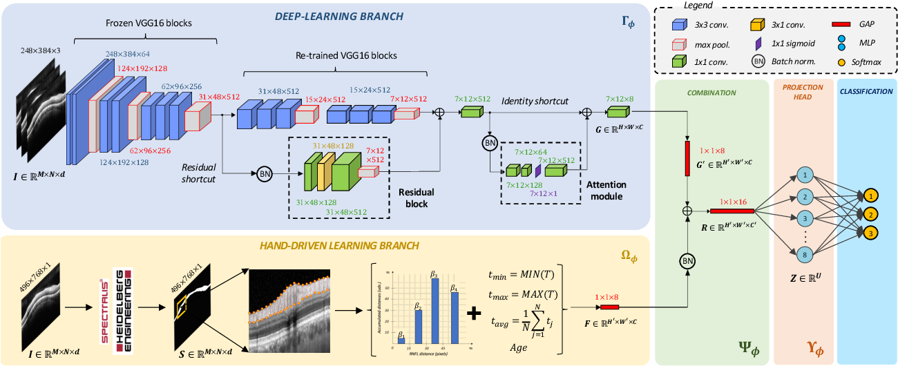 Figure 3 for Circumpapillary OCT-Focused Hybrid Learning for Glaucoma Grading Using Tailored Prototypical Neural Networks