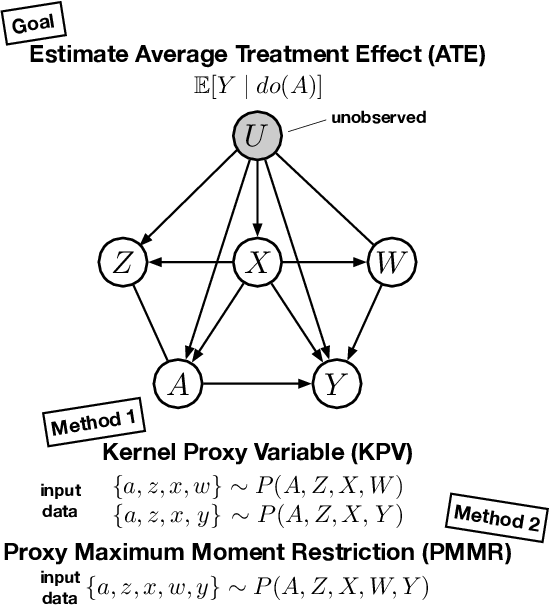 Figure 1 for Proximal Causal Learning with Kernels: Two-Stage Estimation and Moment Restriction