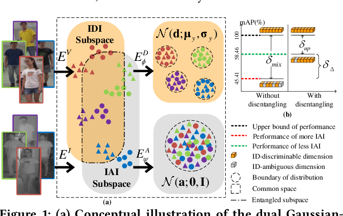 Figure 1 for Dual Gaussian-based Variational Subspace Disentanglement for Visible-Infrared Person Re-Identification
