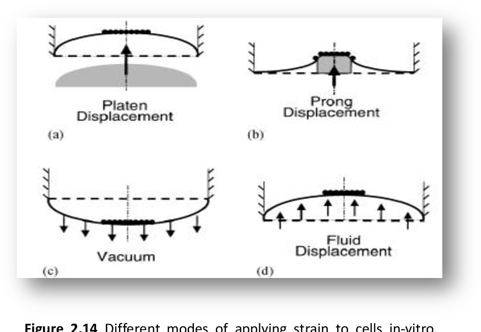 Figure 2 14 from Use of poly vinyl alcohol (PVA