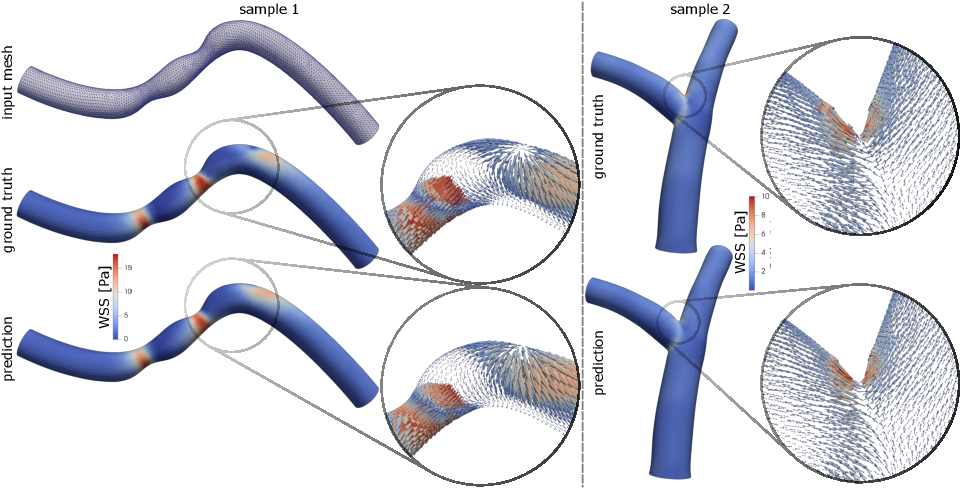 Figure 4 for Mesh convolutional neural networks for wall shear stress estimation in 3D artery models
